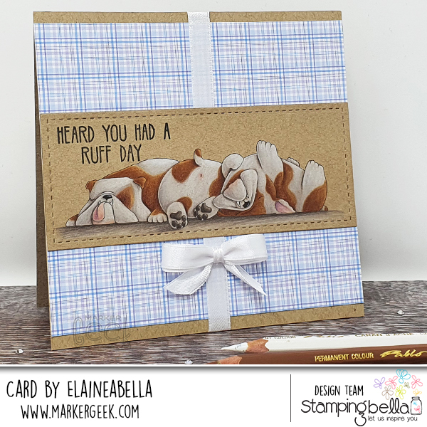 Coloured Pencil Bulldog Video & Card featuring Stamping Bella Bully Trio stamp